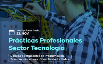 Postulación Prácticas Profesionales Sector TI