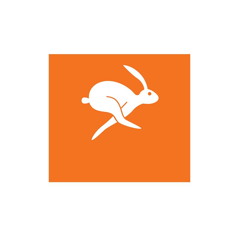 newdev